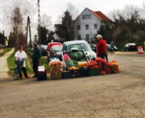 Helyi zöldségárus, sajtos-tejes és a gombás fiatalember elférnek néhány kartondobozon