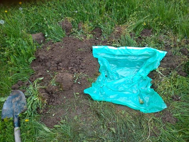 felásás, és a műanyag zsák lehelyezése után