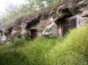 Elhagyott pincesor-Bernecebaráti